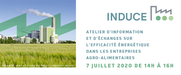 Image of Induce Flyer French